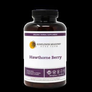 hawthorne-berry