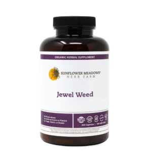 jewel-weed